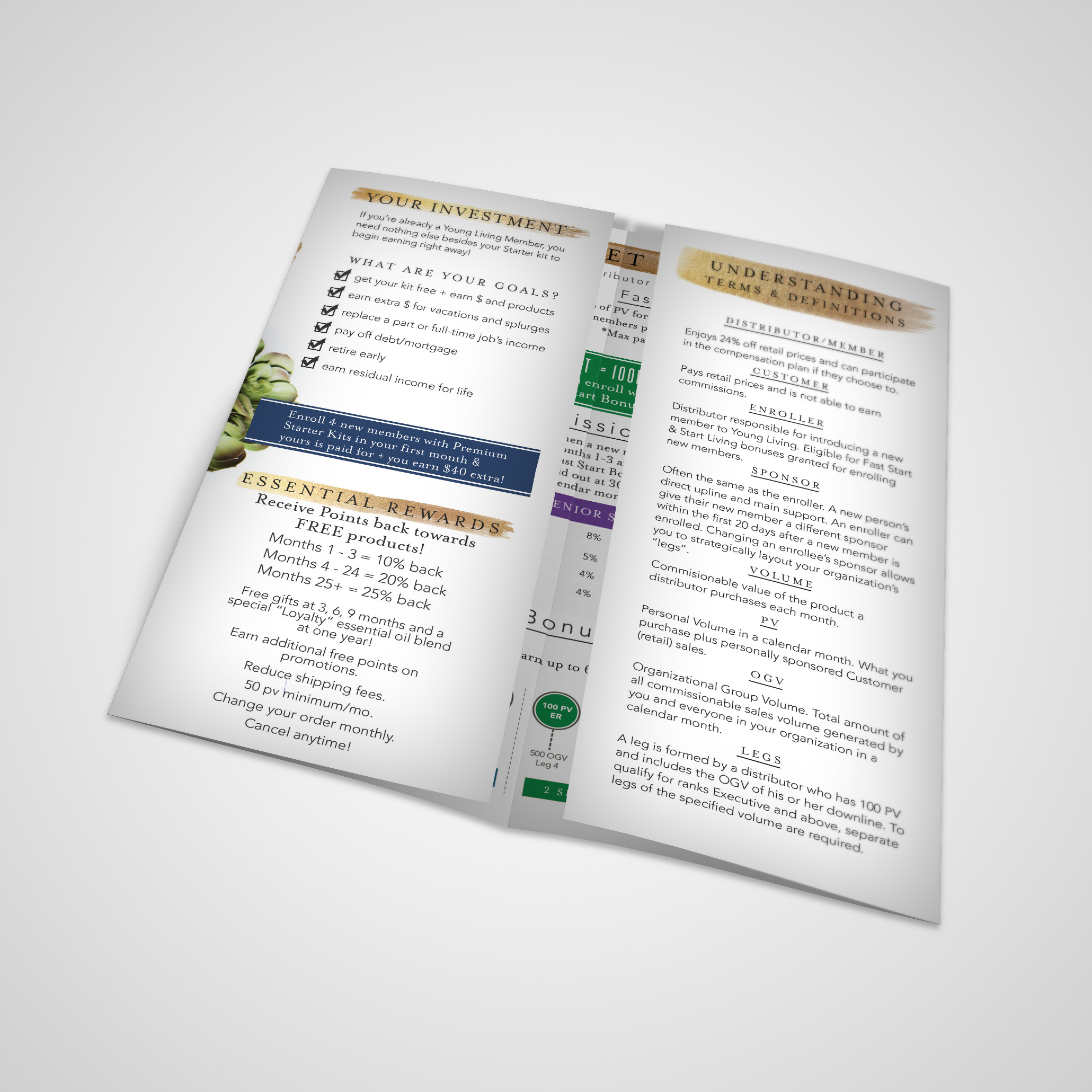 Young Living Everyday Oils Brochure
